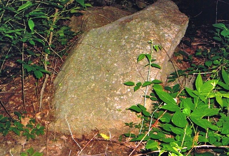 fieldstone-2008-2