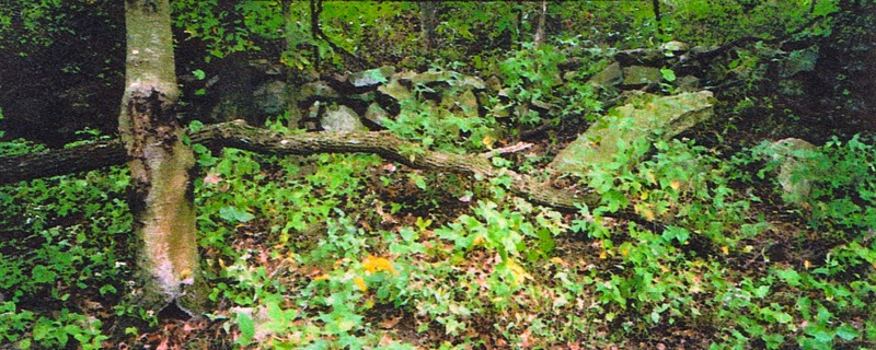 65-partridge-run-stone-wall-10-2001-picture_2