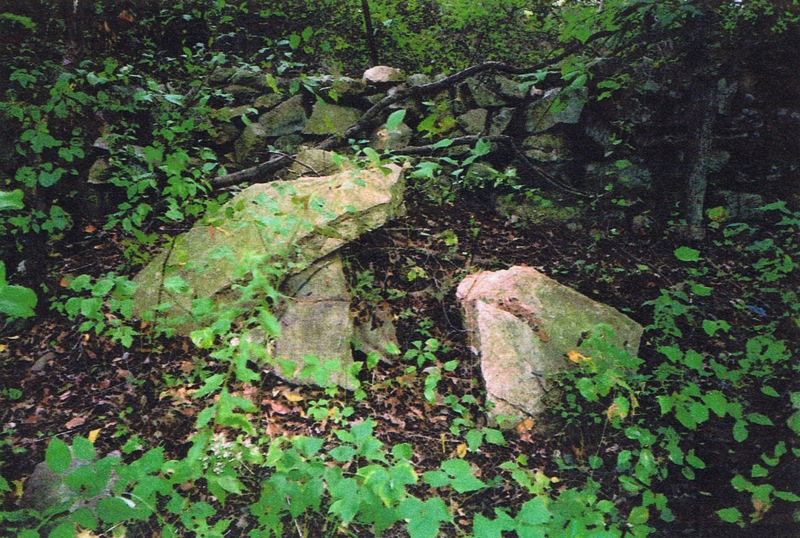 in-backyard-of-65-partridge-run-stone-wall-10-2001-picture